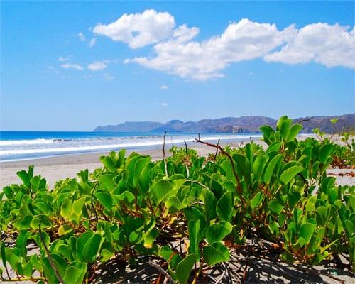 Disfruta de la Pura Vida en Costa Rica