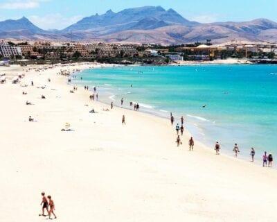 Navidades paradisíacas en Fuerteventura