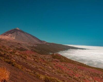 ULTIMA HORA oferta a Tenerife, Islas Canarias