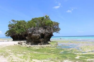 Isla de Pemba