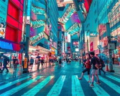 Viaje a Tokio, Japón