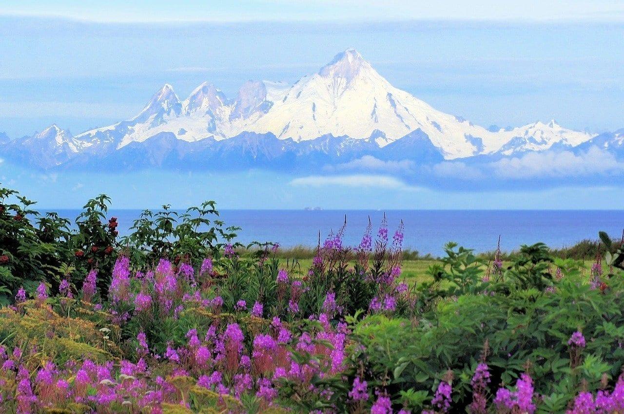 Alaska Kenia Mt Iliamna