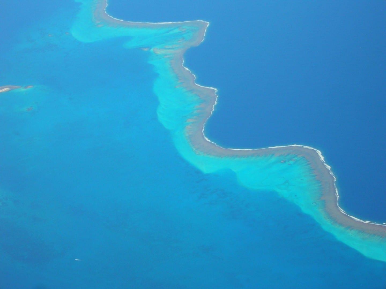 Arrecife de Nueva Caledonia Nueva Caledonia