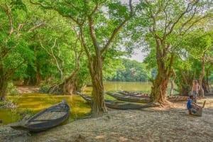 Bangladesh Paisaje Naturaleza