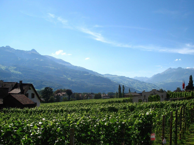 Bodega en Balzers Liechtenstein