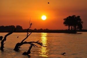 Botswana Puesta Del Sol Chobe