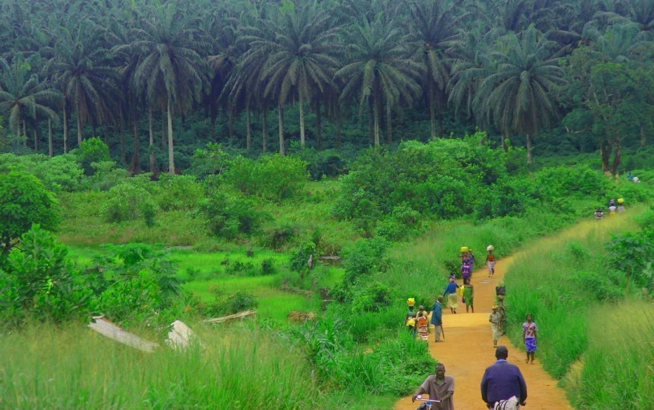 Camino rural Sierra Leone