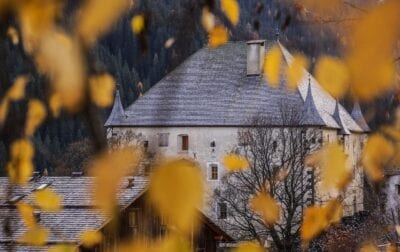 Castillo Hungría Hojas