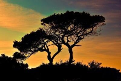 Chipre Cavo Greko Parque Nacional