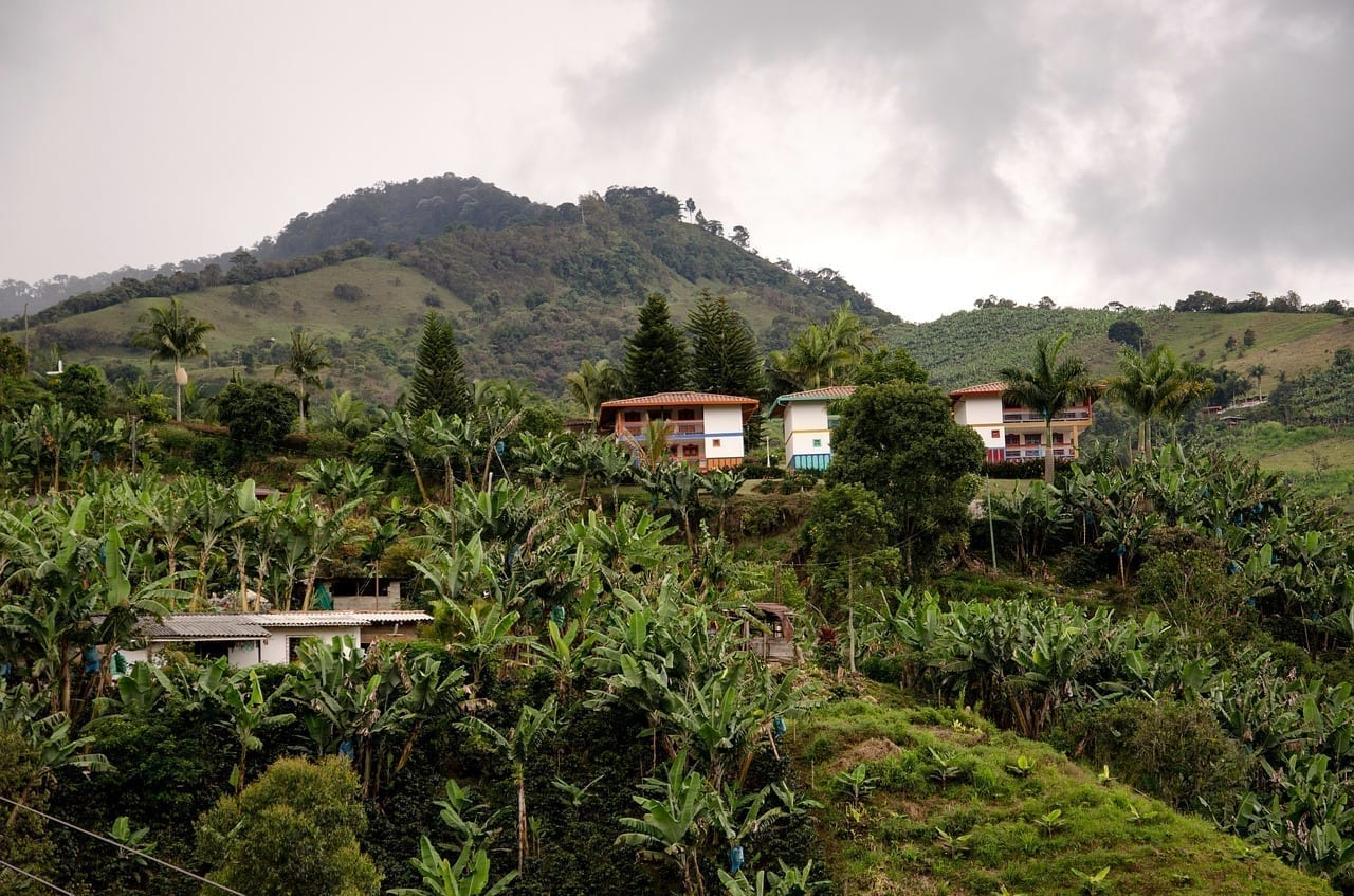 Colombia Jardin Kaffeezone