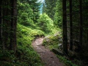 Caminando por uno de los senderos alpinos marcados Austria