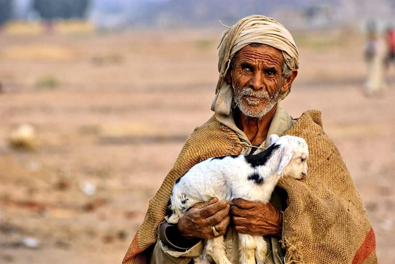 Egipto Hombre Beduino