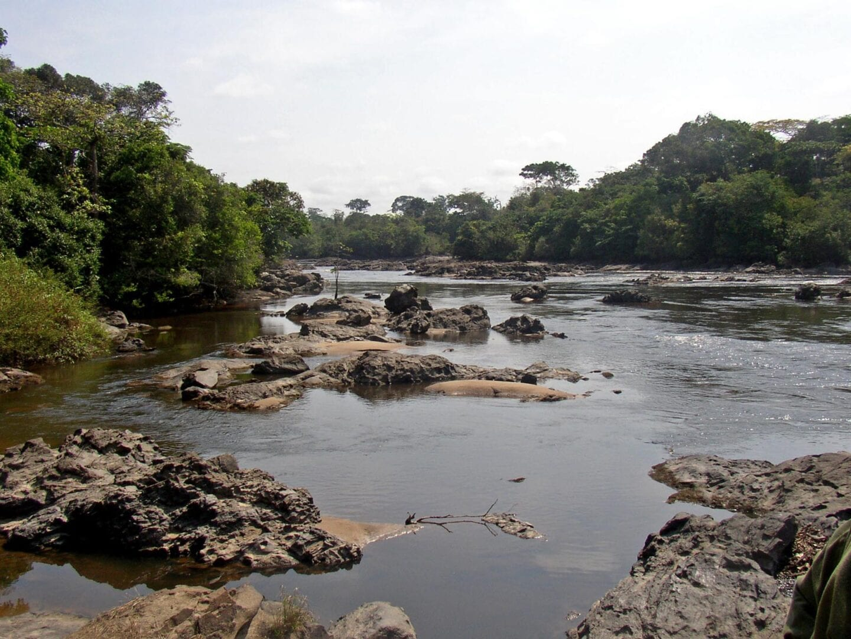 El río Epulu en la Reserva de Vida Silvestre de Okapi Congo