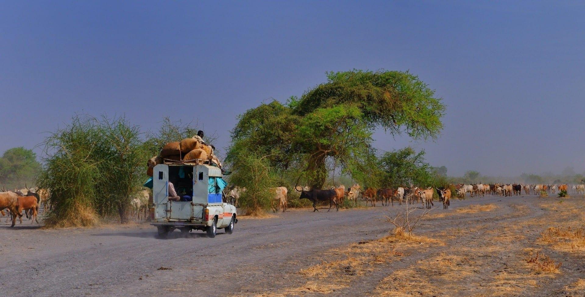En algún lugar de la región del Alto Nilo Sudán