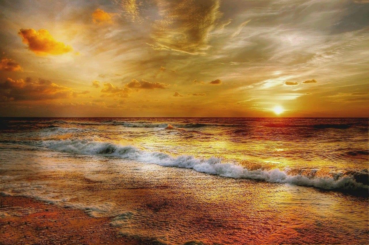 Gallina De La Playa Sun Dinamarca