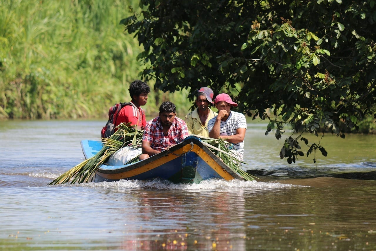 Guyana Los Agricultores Caña De Azúcar