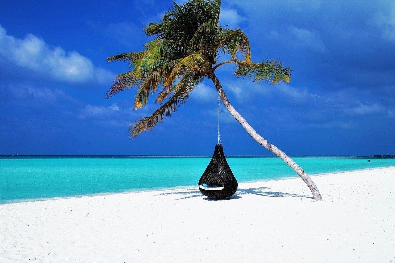 Maldivas Palmera Hamaca