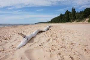 Mar Báltico Mar Letonia