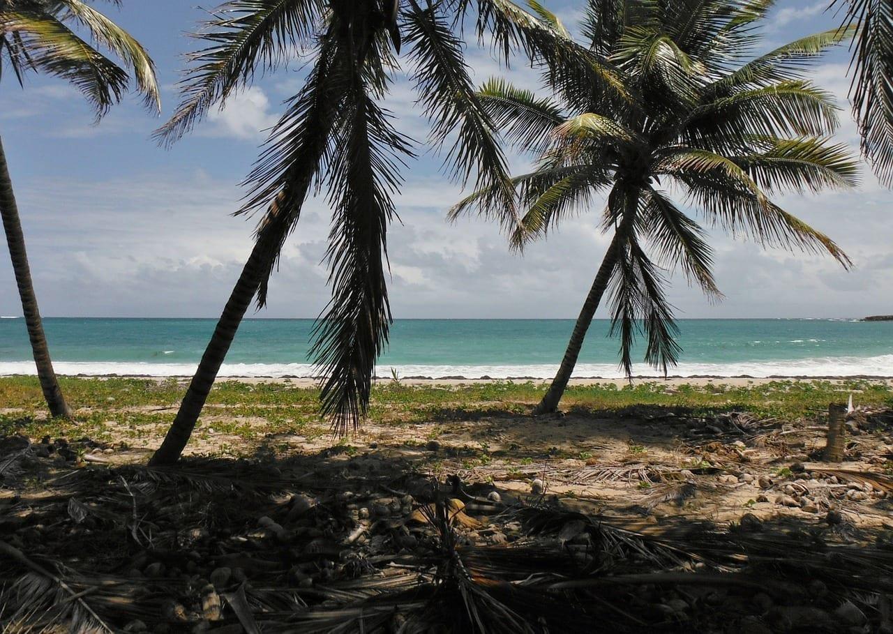 Martinica Isla Holiday