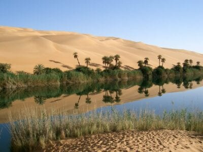 Oasis Libia Desierto