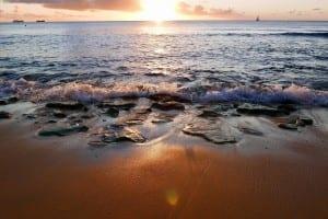 Orilla Del Mar Playa Barbados