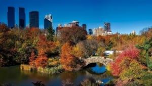 Parque Central Ciudad De Nueva York Urbana