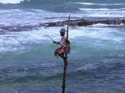 Pesca Pescador Sri Lanka