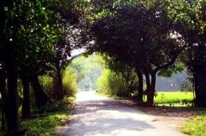 Por Carretera Bangladesh Mymensingh