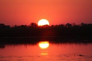Puesta Del Sol áfrica Botswana