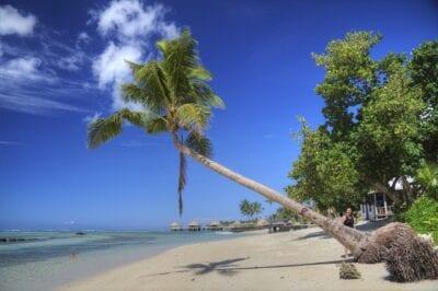 Samoa Trópico Playa