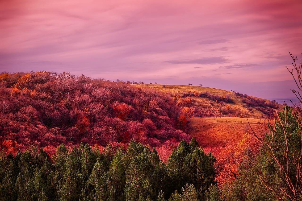 Serbia Colinas Montañas