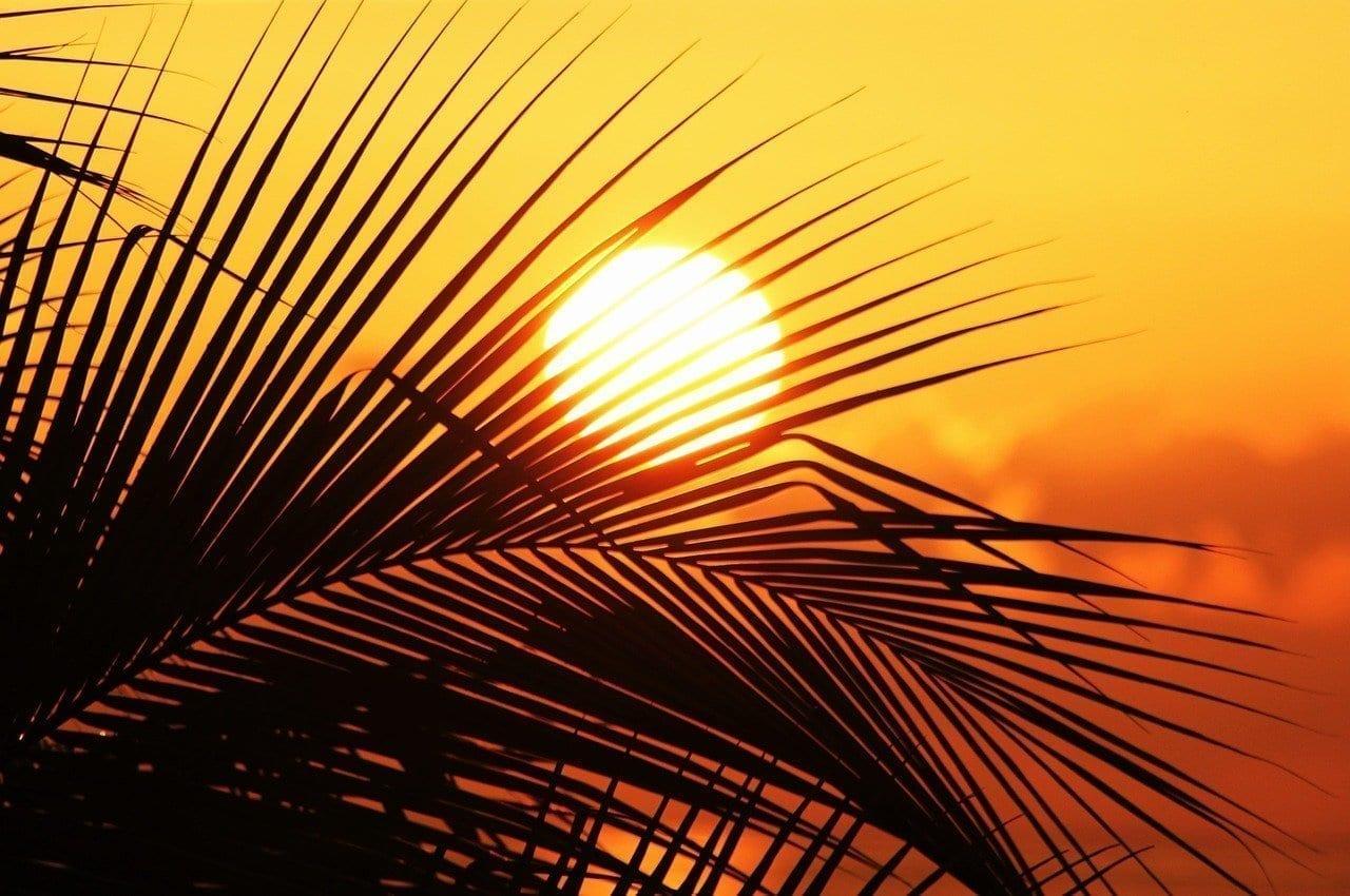 Sol De Jamaica Sun Puesta Del Sol