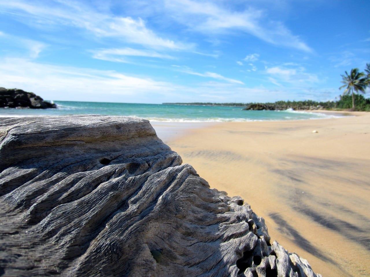 Sri Lanka Playa Madera