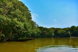 Sylhet Ratargul Bangladesh