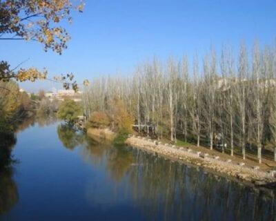 Aranda de Duero España