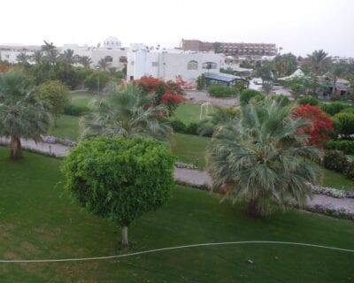 Brayka Bay Egipto