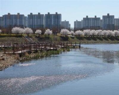 Bucheon Corea del Sur