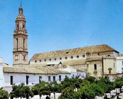 Bujalance España