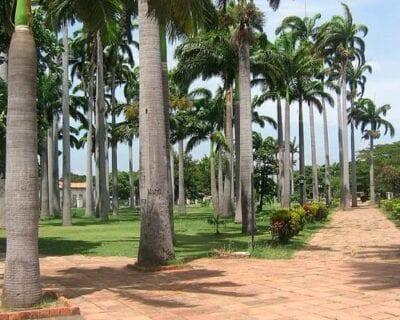 Cúcuta Colombia