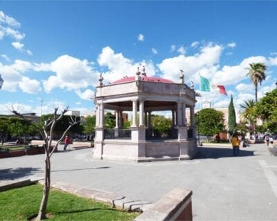 Calvillo México