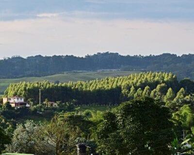 Circasia Colombia