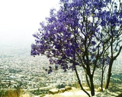 Cochabamba Bolivia