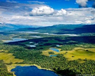 Denali National Park AK Estados Unidos