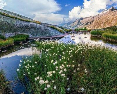 Grimsel Suiza