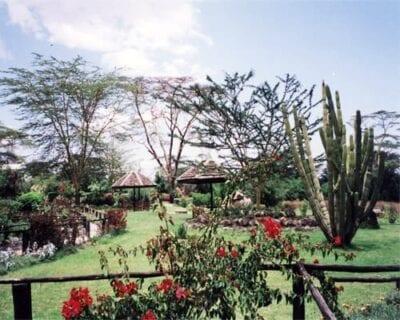Naivasha Kenia