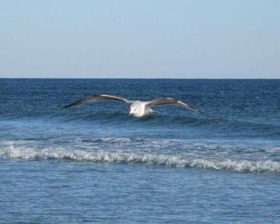 Ocean Isle Beach NC Estados Unidos