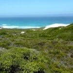 Reserva Natural De Hoop República de Sudáfrica