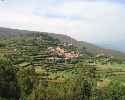 Vale de Cambra Portugal