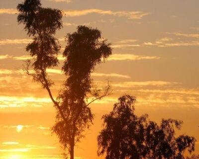 Chandler AZ Estados Unidos