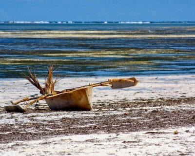Costa Oeste (Zanzibar) Tanzania